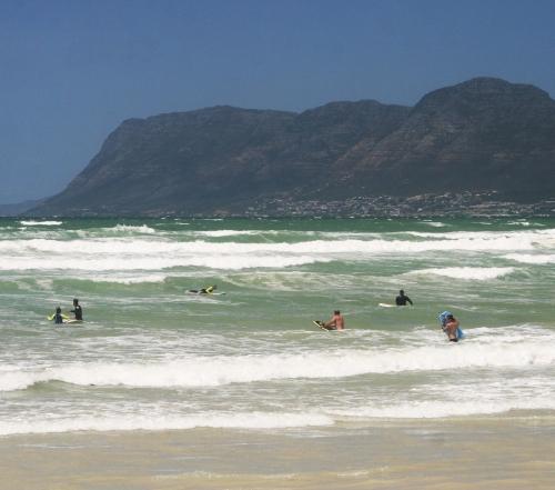 Surfers Corner Wind Swept