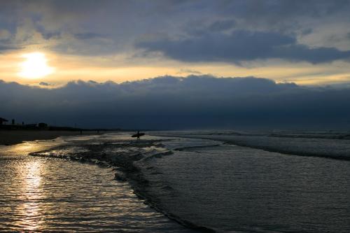 grey sun surf
