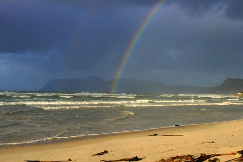 rainbow surfers corner