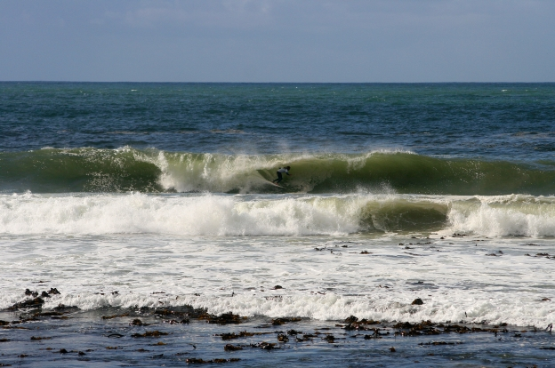 Andrew Wilsnagh Kalk Bay Reef