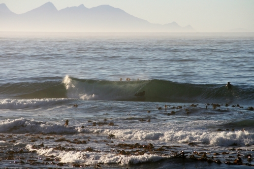 kalk bay tube