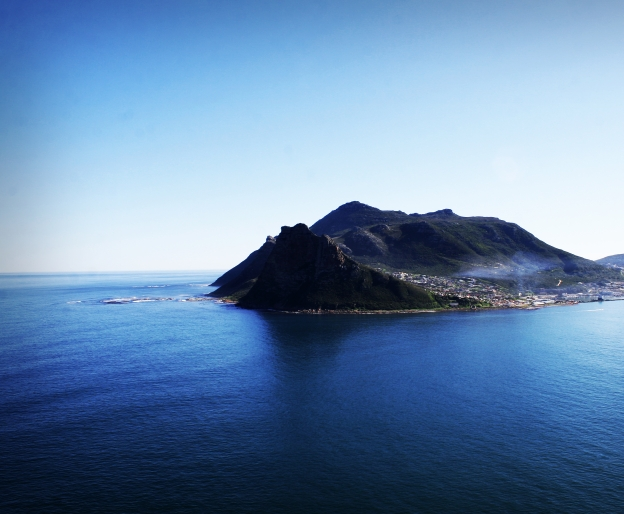 Hout Bay sentinel