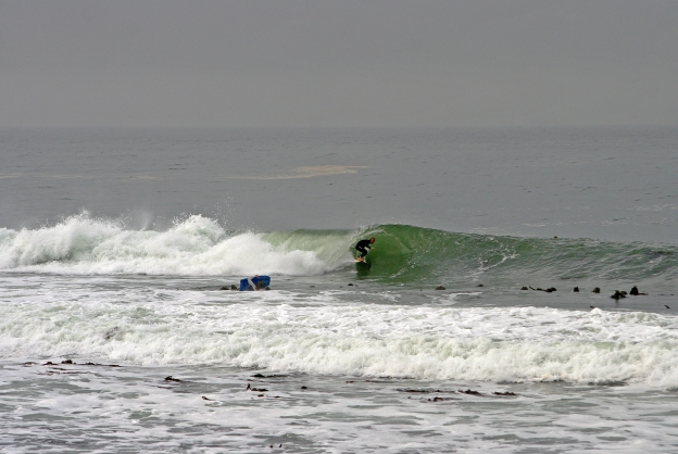green-barrel-kalk-bay