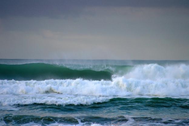 mind-surf