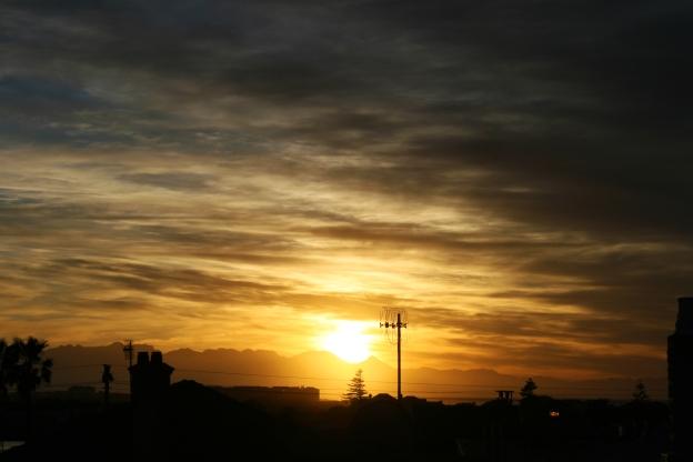 garden-sunrise