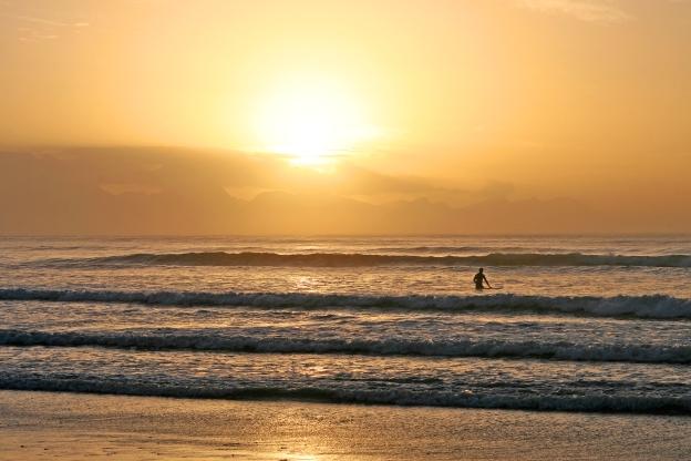 sunrise-walk-lineup