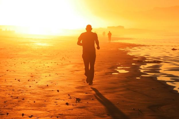 sunny-run