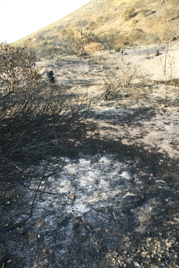 burnt-patch